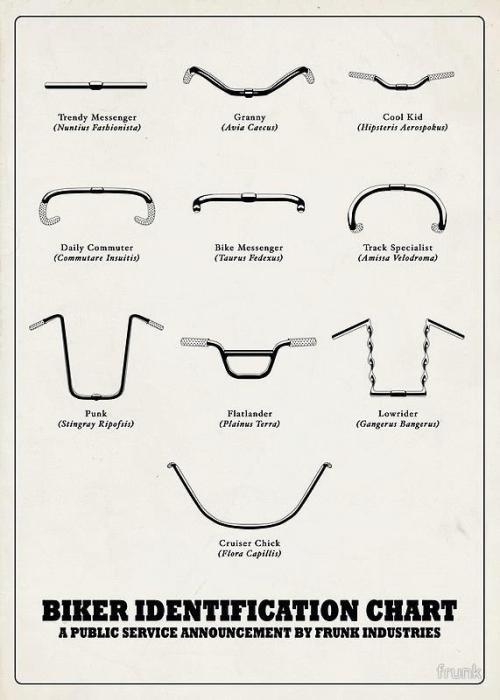 biker-identification-chart