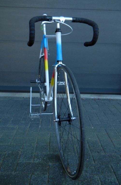 1311 Romani Fixie Ambrosio Wheels 24