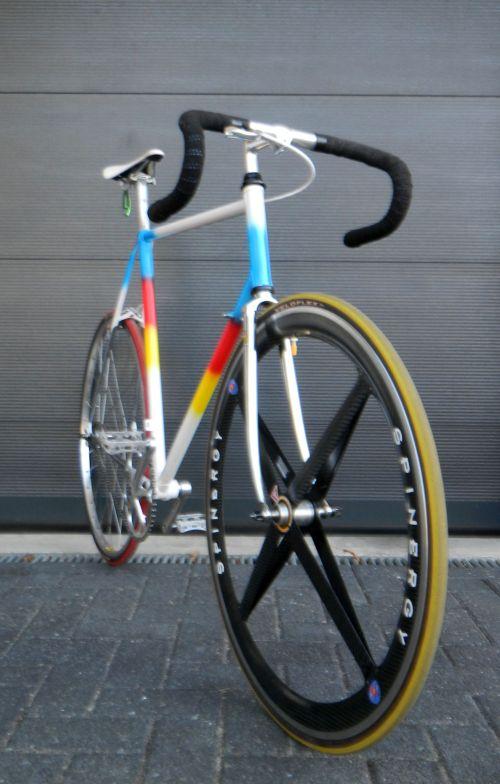 1403 Romani Spin 02