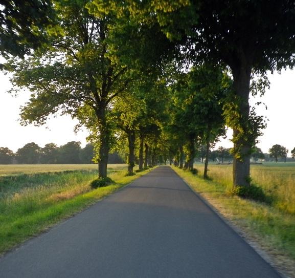 1406 Bremer Süden 04