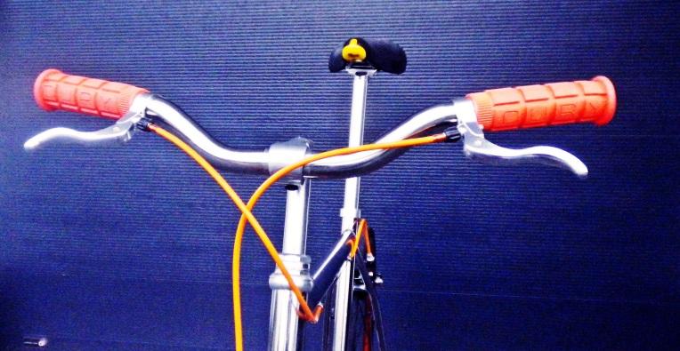 IMGP1980