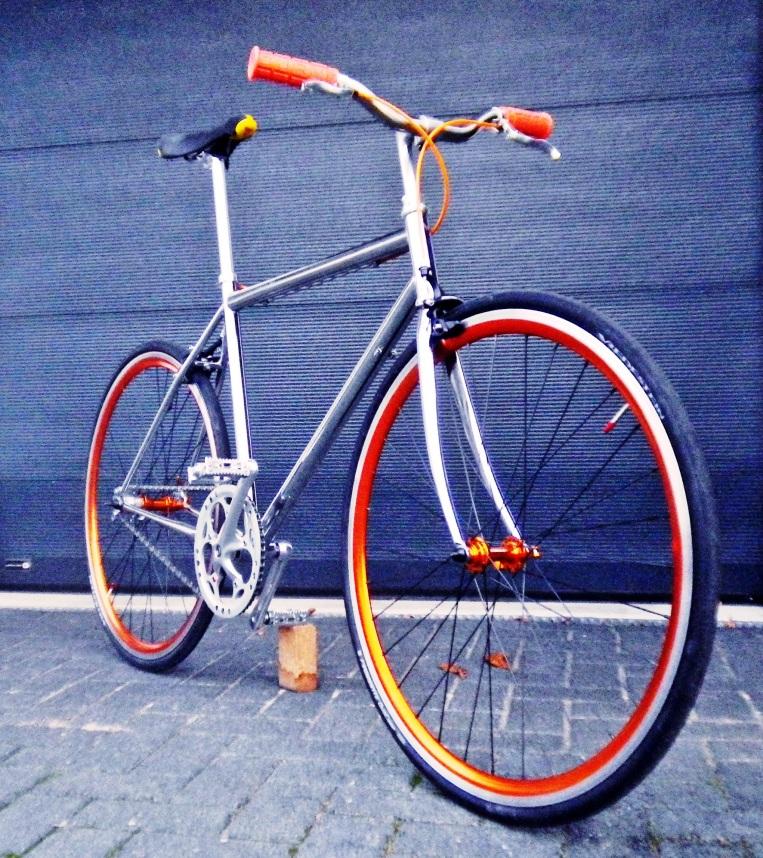 IMGP1982