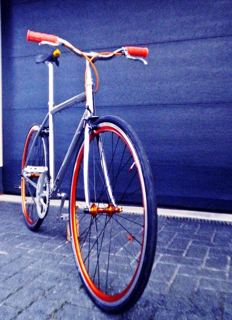 IMGP1983