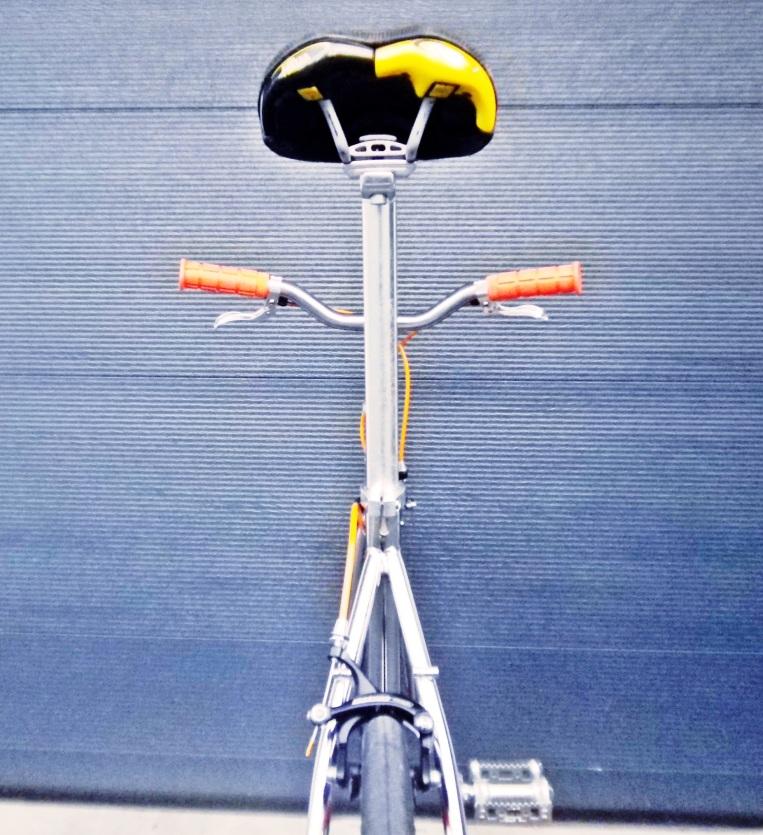 IMGP1988