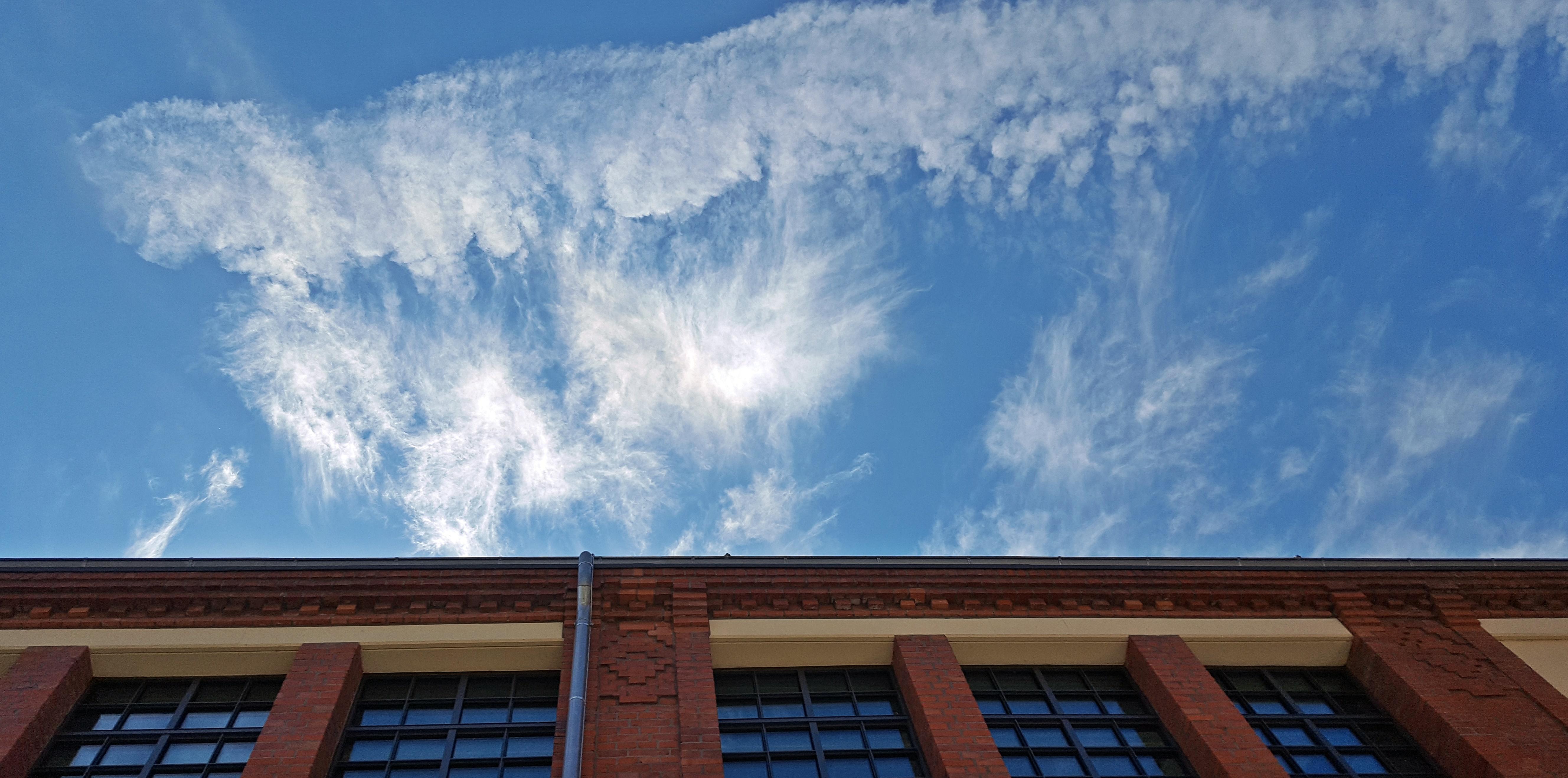 1708 Giant Himmel