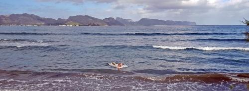 1710 Malle Lars schwimmt 1